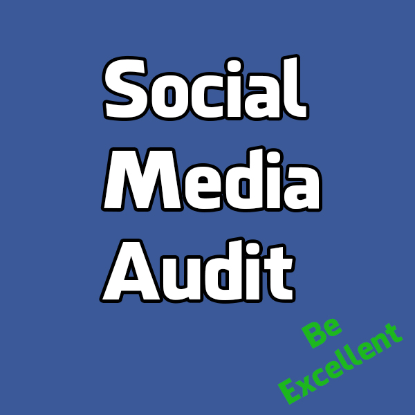 Social Media Audit - Level 1-3 - Click Image to Close